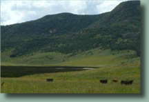 High Tide Ranch is a working ranch located just outside beautiful Steamboat Springs, Colorado